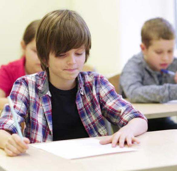 Schoolpedia-Skill-mastery